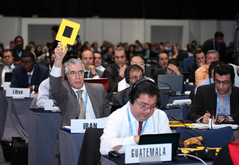 Arasteh is very excited to vote at WCIT. Other participants? Not so much. Photo credit: ITU